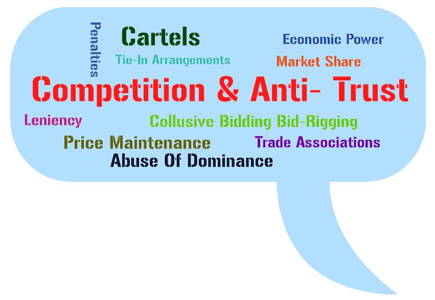 Competition And Antitrust Advisory Services Delhi India